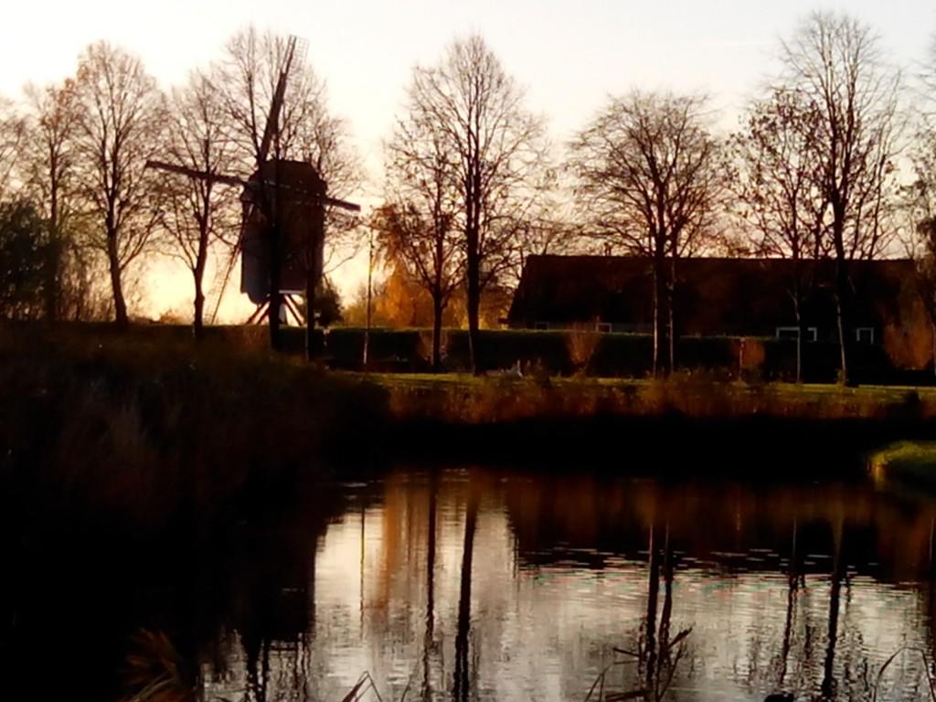 Hanneke van Noord-Bij